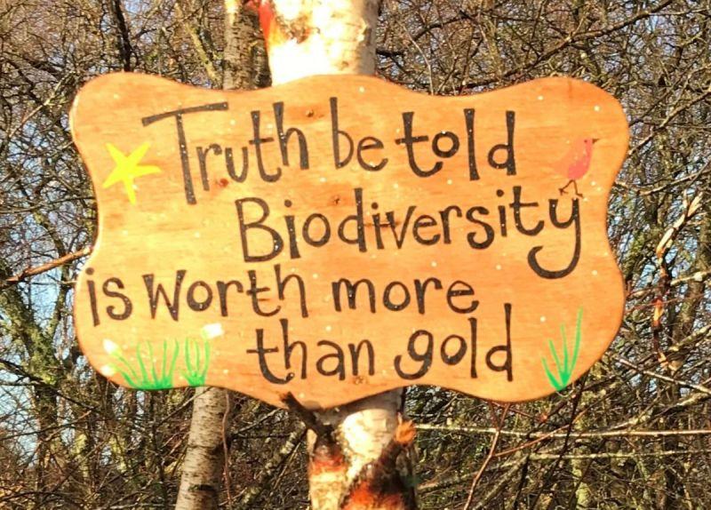1-biodiversity-sign