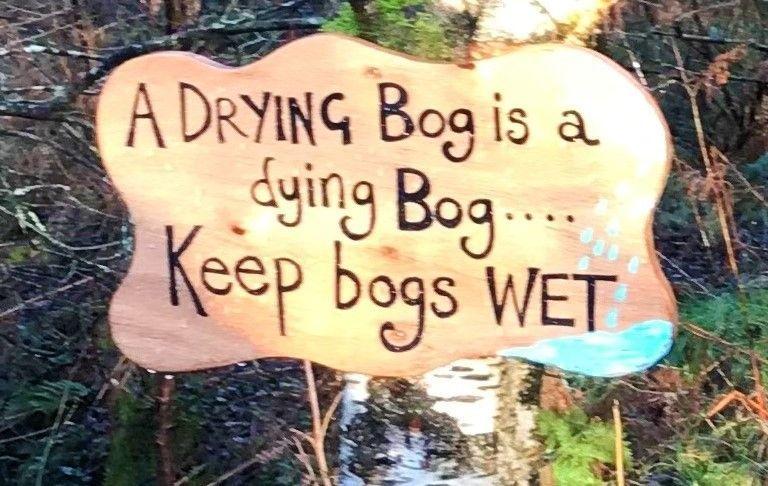 3-drying-bog
