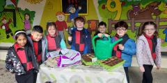 Kilteevan National School Success in Energia GIY Community Classroom Campaign
